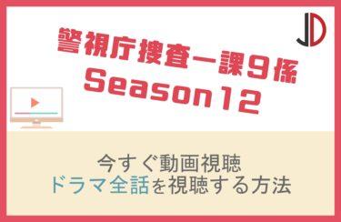 ドラマ|警視庁捜査一課9係 Season12の動画を無料で視聴する方法