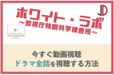 ドラマ ホワイト・ラボ(薮宏太) の動画を無料で最終回まで視聴する方法