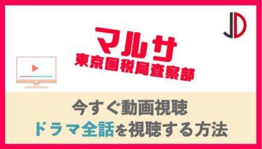 ドラマ|マルサ 東京国税局査察部の動画を無料で最終回まで視聴する方法