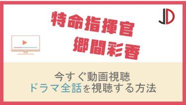 ドラマ|特命指揮官 郷間彩香の動画を無料でフル視聴する方法