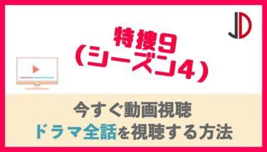 ドラマ|特捜9 シーズン4(season4)の見逃し動画を無料視聴できる配信サイト!各話の再放送情報も!