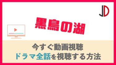 ドラマ 黒鳥の湖の見逃し動画を無料視聴する方法!1話〜最終回までの各話の再放送情報も!